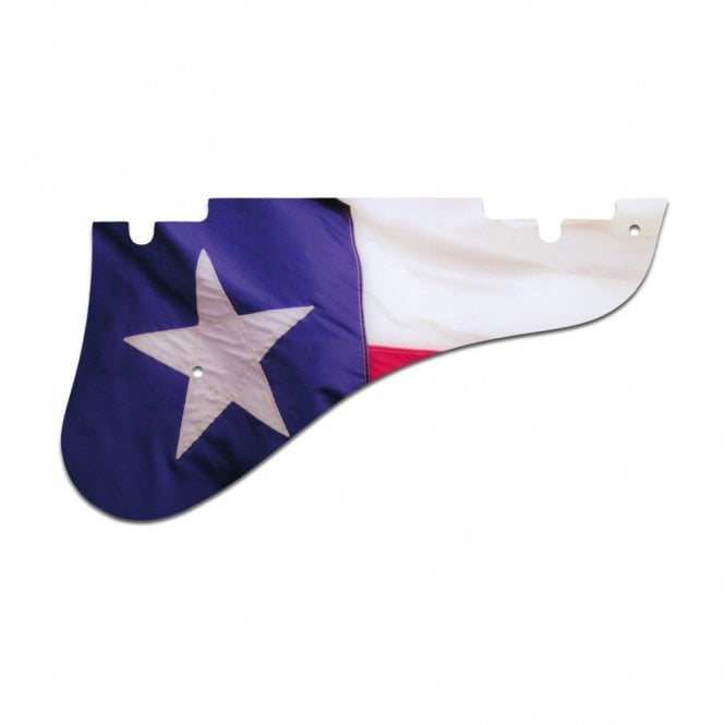 WD Music Epiphone Emperor Swingster - Texas Flag