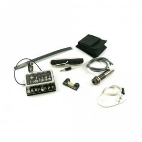 Internal Preamp/Mixer With Element And Ibeam Pickups And Remote Control!!