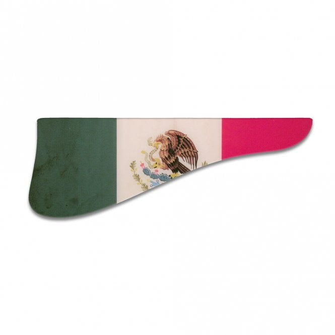 WD Music L-5D - Mexican Flag Relic