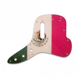 Musicmaster Bass - Mexican Flag Relic