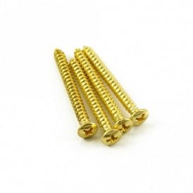 Neck Screw Gold (Bag of 4)