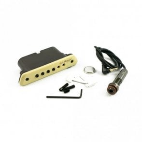 Passive Magnetic Soundhole Pickup
