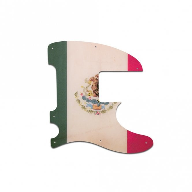 WD Music Squier Vintage Modified Telecaster Bass - Mexican Flag Relic