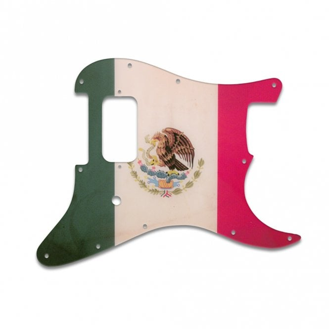 WD Music Strat Tom Delonge - Mexican Flag Relic
