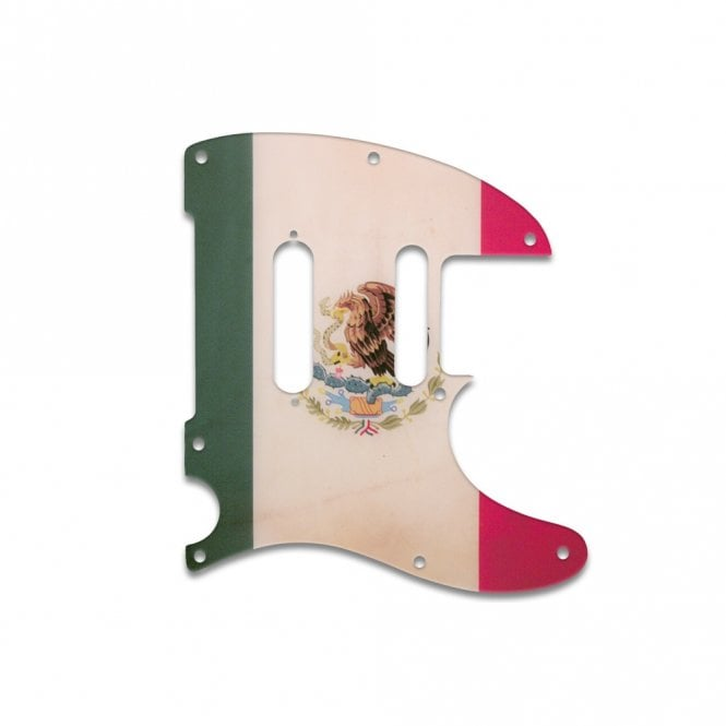 WD Music Telecaster Modern Player Plus - Mexican Flag Relic