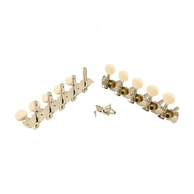 WD Music 10 String Tuners