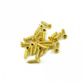 #4 Fender Pickguard Screw Gold (Bag Of 20 )