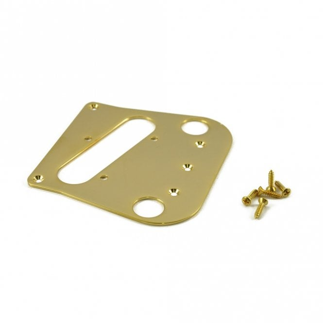 WD Music Bigsby Tele Gold Mirror Acrylic P/U Mounting Plate